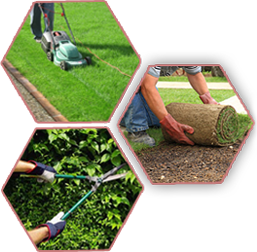 garden-maintainance
